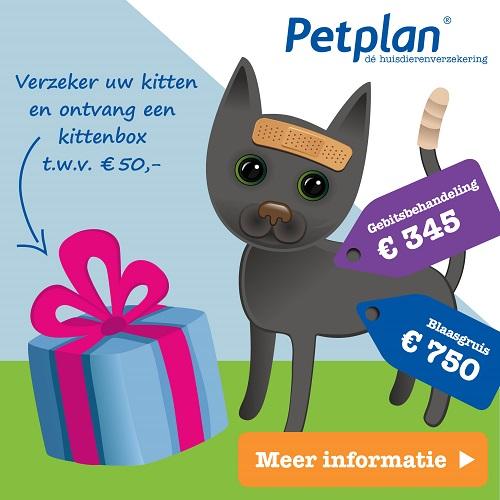 Petplan-huisdierenverzekering-actie